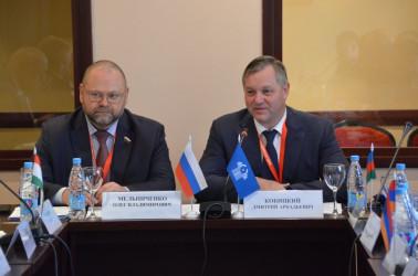 Наблюдатели от МПА СНГ определили программу работы на  президентских выборах в Беларуси