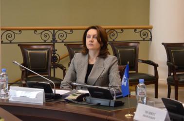 Онлайн-встреча по вопросам подготовки референдума в Кыргызской Республике, 29.03.2021
