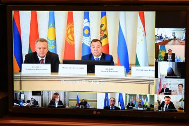 Эксперты стран Содружества обсудили вопросы сотрудничества в сфере экологии