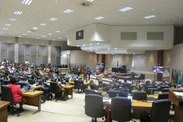 Делегация МПА СНГ прибыла с рабочей поездкой в ЮАР