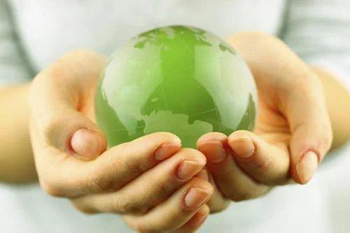 2013 год объявлен Годом экологической культуры и охраны окружающей среды