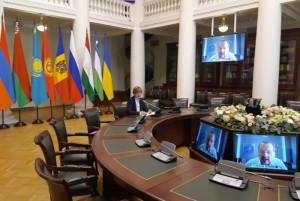 Парламентарии и эксперты обсудили устойчивое развитие сельских территорий в условиях пандемии