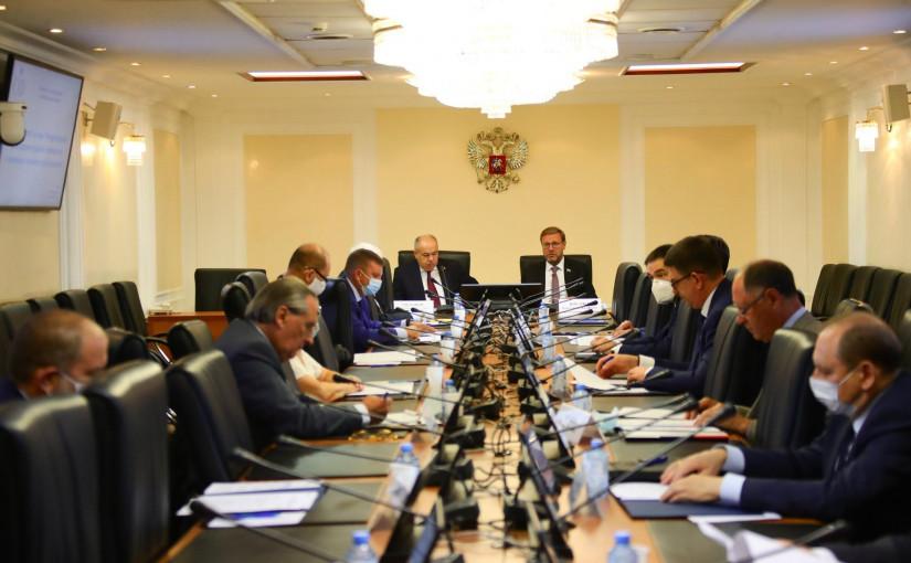 В верхней палате российского парламента обсудили возможности и механизмы парламентской дипломатии