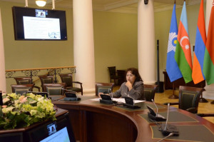 CIS Advisory Board on Cooperation in the Field of Public Health Discussed COVID-19 Situation