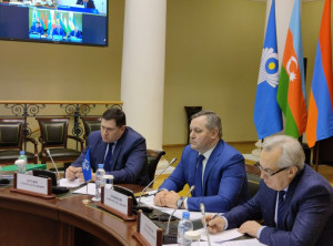 9th Nevsky International Ecological Congress to Take Place in Framework of CIS Interparliamentary Assembly in May 2021