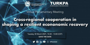 Experts Discussed Issues of Strengthening Inter-Parliamentary Cooperation on Economic Recovery Plans