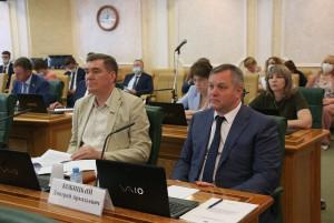 Dmitriy Kobitskiy Addressed Federation Council Committee