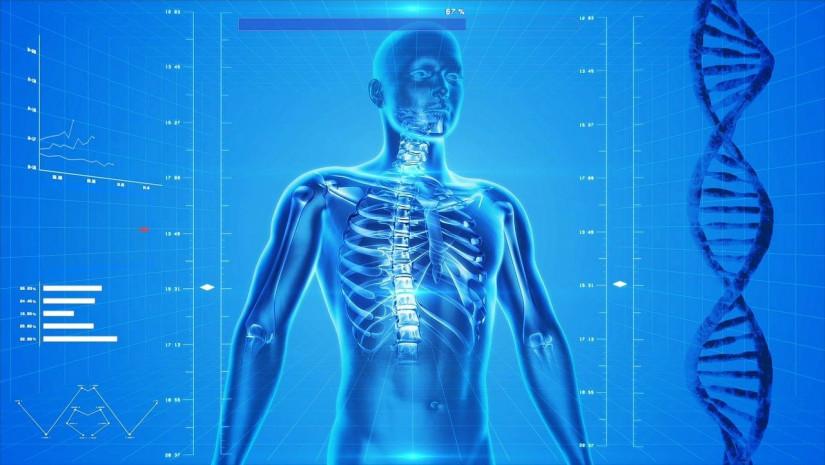 МПА СНГ разрабатывает модельный закон «О цифровом здравоохранении»