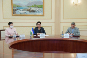 Tanzila Narbaeva and Aida Kasymalieva Discussed Protection of Rights and Interests of Women