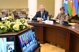 Commonwealth Experts Discussed Issues of Ecology Cooperation