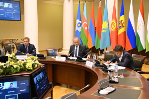 Наблюдатели от МПА СНГ провели встречи с российскими партиями «Зеленая альтернатива» и «Яблоко»