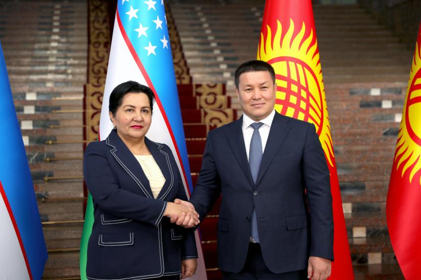 Талант Мамытов и Танзила Нарбаева обсудили перспективы межпарламентского сотрудничества