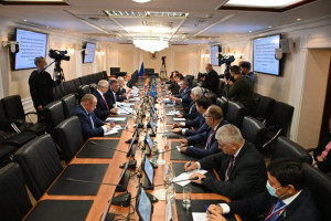 International Observers Held a Meeting in Upper Chamber of Russian Parliament