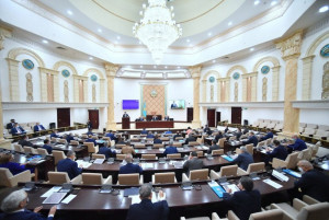 Senators of Kazakhstan Approve Legislation to Strengthen Social Safety Net for Citizens