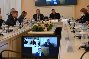 Experts Discussed Draft Model Laws in Legal Field