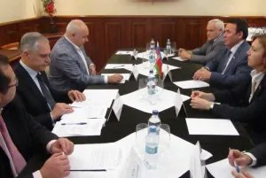 Наблюдатели от МПА СНГ определили план работы в день голосования