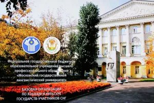 Национальные центры языков и культур СНГ рассказали о своей деятельности