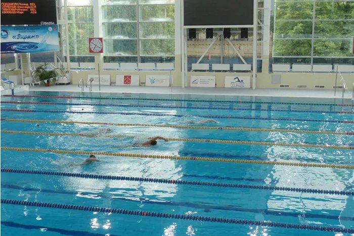 Сотрудники международных организаций и консульских учреждений участвовали в соревнованиях по плаванию