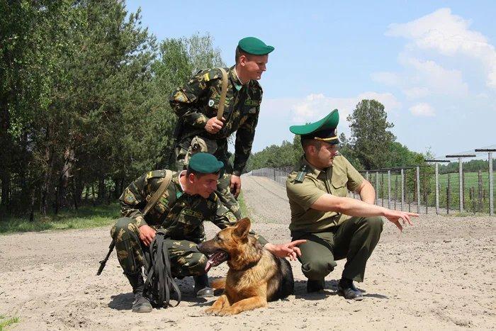 Тема укрепления пограничной безопасности на внешних границах на 2016 – 2020 годы обсуждается в столице Республики Беларусь
