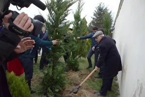 В Азербайджанской Республике стартовала акция «Зеленая волна»