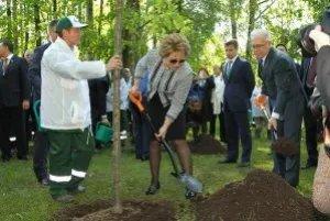 Валентина Матвиенко и участники экоконгресса восстановили утраченные деревья в Таврическом саду