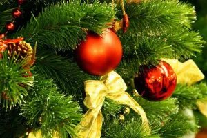 Новый Год отмечают во всех странах Содружества