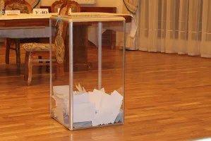 Наблюдатели от МПА СНГ завершили работу на зарубежных избирательных участках