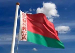 Наблюдатели от МПА СНГ примут участие в мониторинге выборов в Республике Беларусь