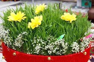 В странах Содружества отмечают день весеннего равноденствия