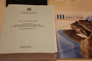 В Таврическом дворце обсудили разрабатываемые МПА СНГ модельные законопроекты в сфере социальной политики