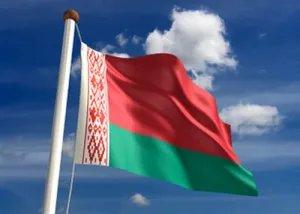Наблюдатели МПА СНГ начали мониторинг выборов в Республике Беларусь
